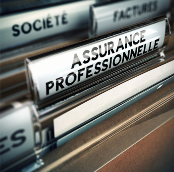 Assurance local professionnel